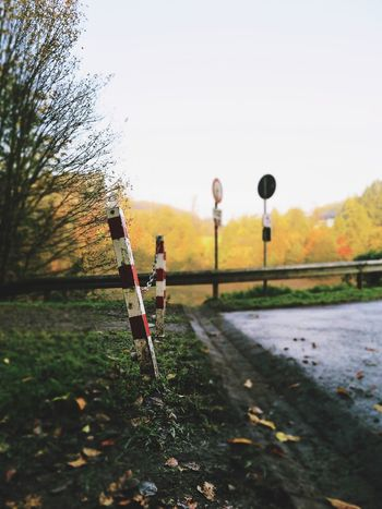 Autumn Autumn Colors Autumn Leaves Marker Nature Pins Signs Tree Barrier Beauty In Nature Clear Sky Day Nature No People Outdoors Red White Selective Focus Separation Sky Tree Way