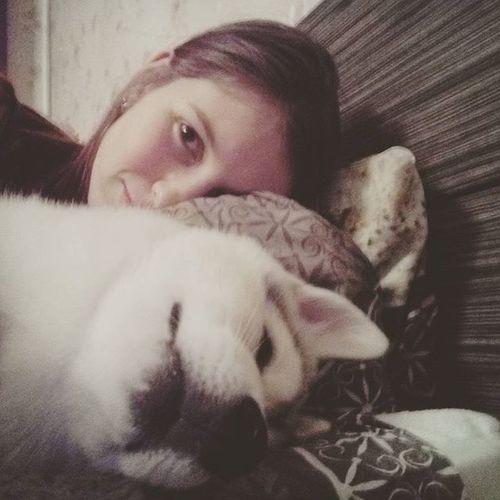 Вот такая вот любовь 😘Эбби дома вкровати , ай как нехорошо собаку и в кровать 😱 но ведь она такая сладенькая попка)))