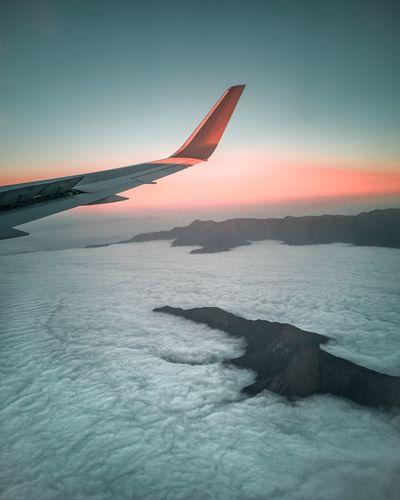 🐒🛬 Sky Flying