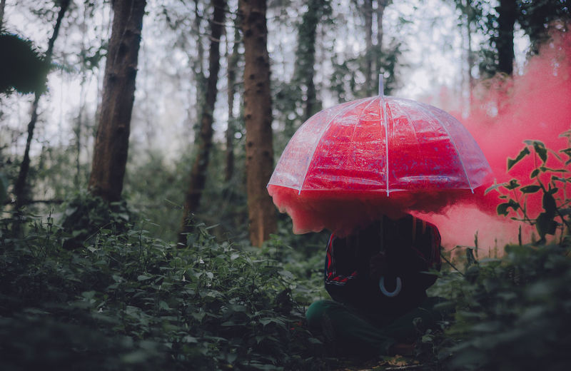 Man With Umbrella And Red Smoke Sitting In Forest