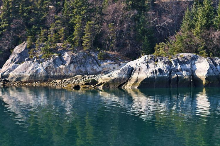 Water Waterfront Beauty In Nature Tranquility Scenics - Nature Rock Tree No People Tranquil Scene Day Nature Rock - Object Reflection Lake Non-urban Scene Solid Plant Mountain Outdoors Nahku_Bay Skagway Alaska Destination