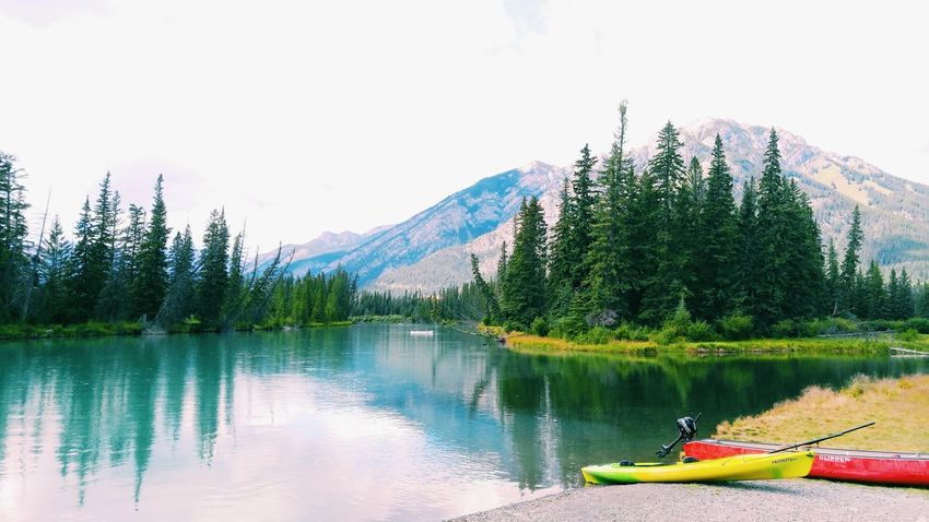 Detailed image of the scenery in Banff, Canada. Clear view of trees lined up on the waters edge, the two kayaks are bright and fill the image with a sense of adventure. Tree Water Day Nature Lake Green Color Outdoors Sky Beauty In Nature Forest Mountain No People