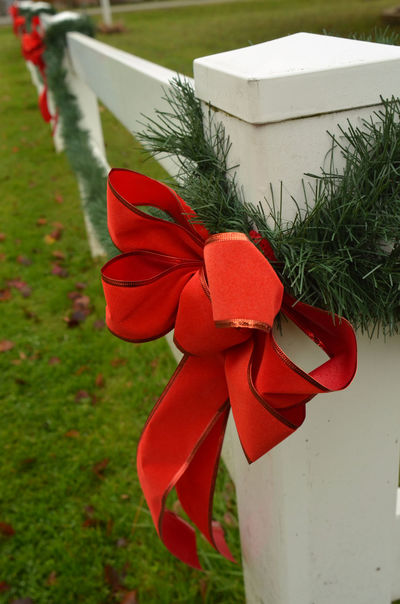 red holiday ribbon on white fence post outdoors Christmas Close-up Day Fence Grass Green Color Holiday Decorations Nature No People Outdoors Red Red Ribbon Red Ribbon Bow