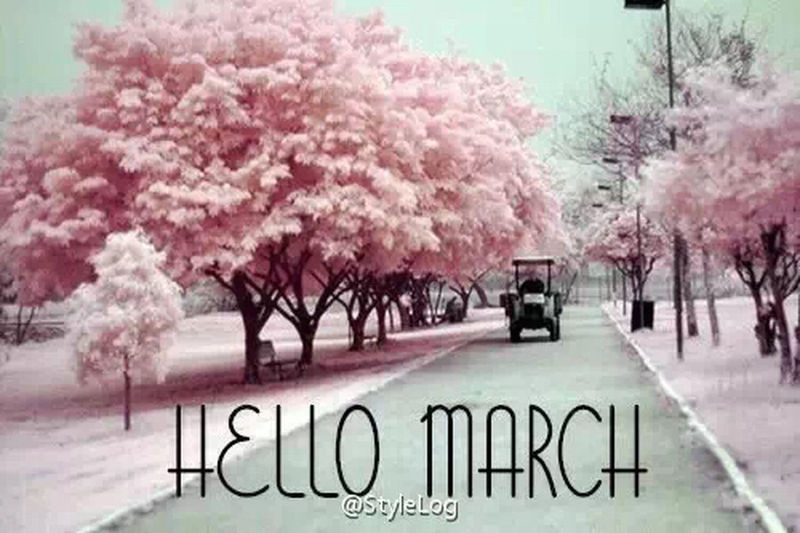 Goodmorning March Spring New Month