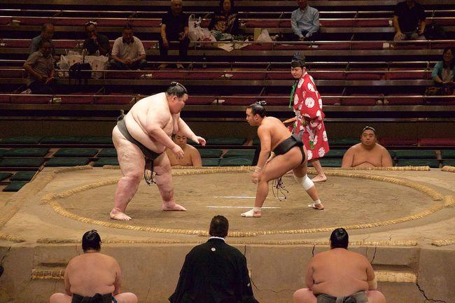 David And Goliath Sumo Sumowrestler Sumo Fight Sumo Wrestlers Japan Culture Japanese Photography Japan Photography Japanese Culture