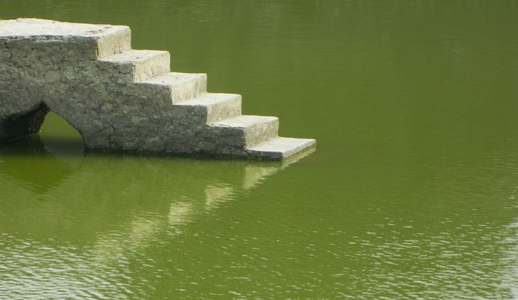 The floating platform Mandu Forts Stairs Reflection Forts Of India