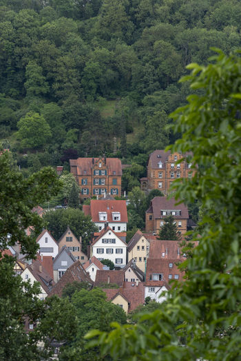 Houses surrounded by nature in a residential area from the german city Schwabisch Hall Architecture Houses Architecture Building Building Exterior Built Structure City Forest German House Hillside Home House Medieval Town Nature No People Old Houses Residential Building Residential District