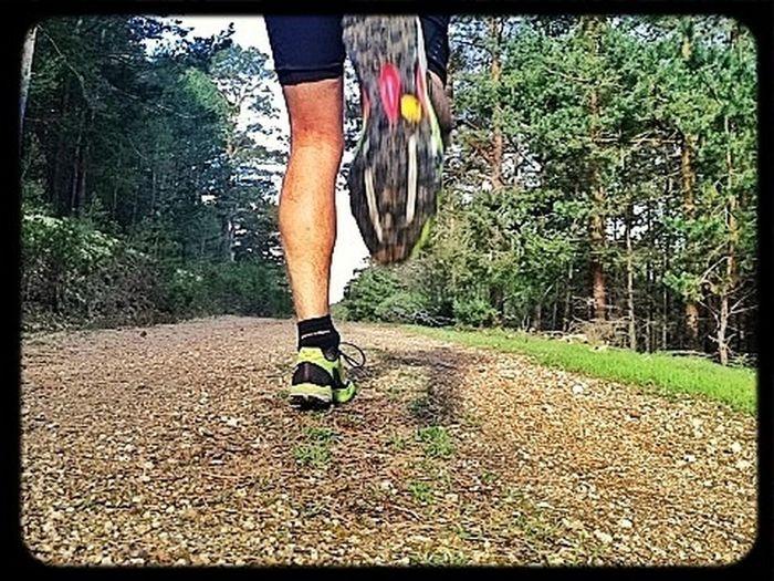 Run Run Run.... #trailrunning #training #gasss #dynafit #felineghost #mountain #ilovemountains #spring #primavera #valledelLozoya #beforework #SuuntoAmbitions #cabezamediana #miradorrobledos