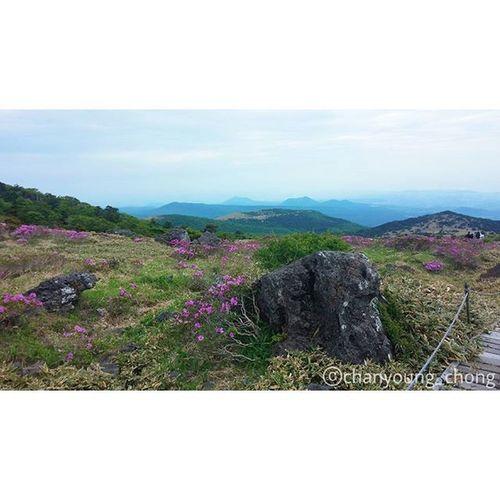경치가 끝내준다👍🙌😎 대한민국 제주도 제주 한라산  윗세오름 오름 여행 사진 Korea Jejuisland Jeju Moutain Hanra Orum Travel Travelgram Photo