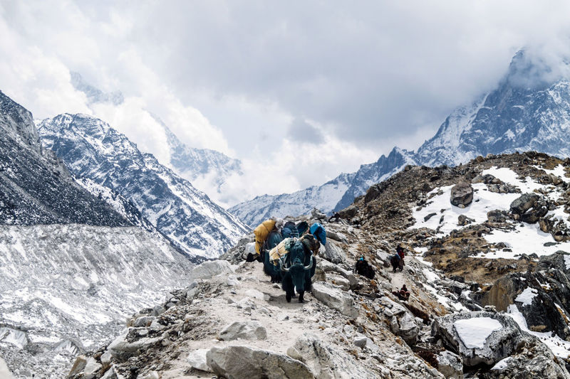 Adventure Beauty In Nature Climbing Cloud - Sky Cold Temperature Day Everest Base Camp Everest Base Camp Trek Hiking Landscape Men Mountain Mountain Climbing Mountain Peak Nature Nepal Nepal Travel Outdoors Scenics Sky Snow Travel Destinations Walking Winter Yak Done That.