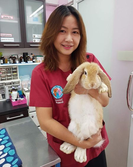 Veterinarian Veterinary Animal Hospital Cute Rabbit ,bunny Bunny  Rabbit Cute Pets Cute Rabbit French Lop Rabbit EyeEm Selects Portrait Smiling Standing Looking At Camera Happiness Cheerful Store Holding