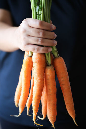 Carrots Carrots Food And Drink Healthy Eating Food Vegetable Carrot Human Hand Freshness Hand Root Vegetable One Person Holding Human Body Part Close-up Organic