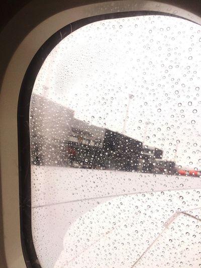 Departure Airport Scandinavian Airlines Wings On Board Copenhagen Kastrup Airport