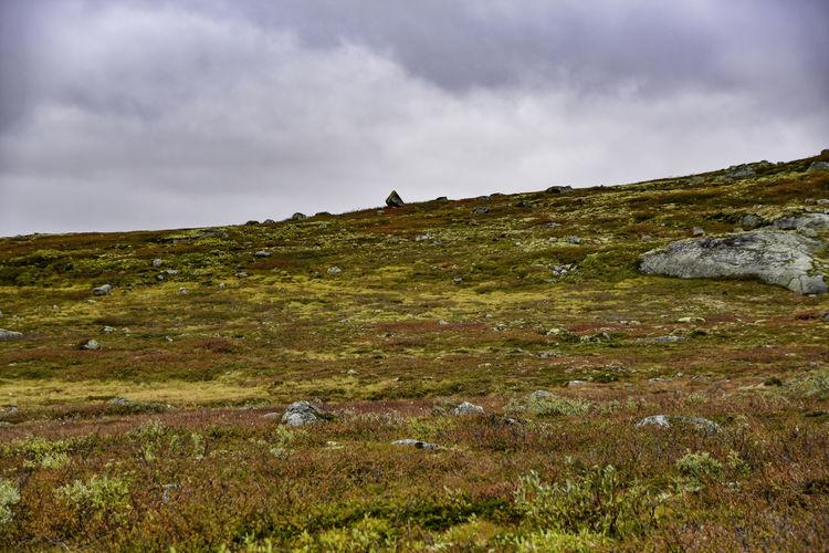 Photo of North