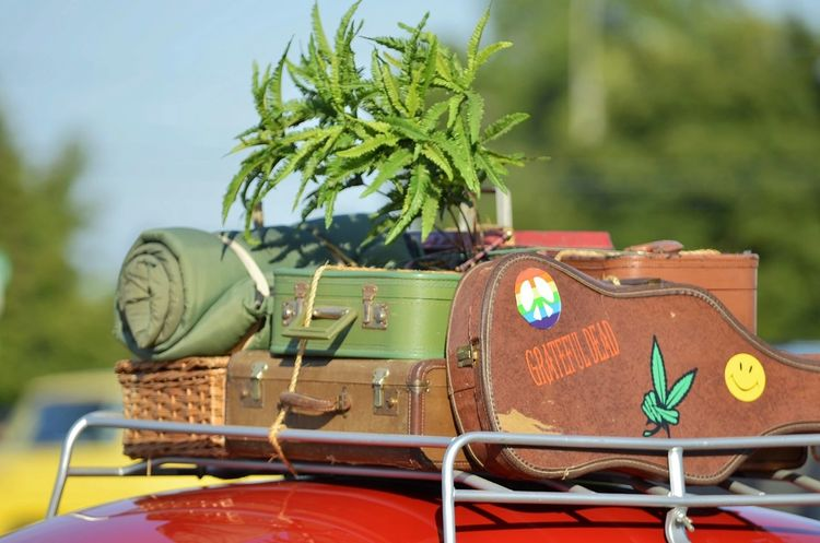 @ Dream Cruise Grateful Dead Marijuana Street Photography