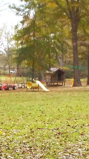 No People Day Outdoors Tree Grass Nature Beauty Of Fall Landscape Autumn playground slide