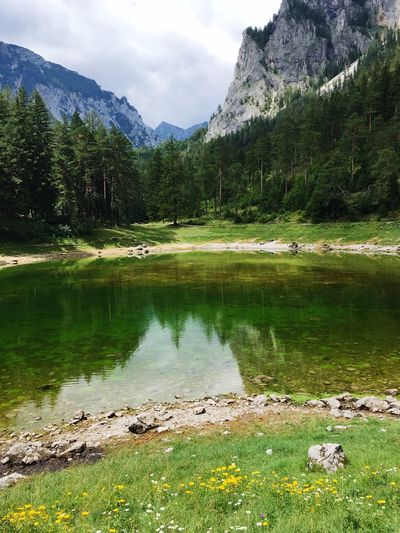 Lake Nature Beauty In Nature Tranquil Scene Reflection Tranquility Water Grass Landscape Mountain Range Forest Tree No People Outdoors EyeEmNewHere