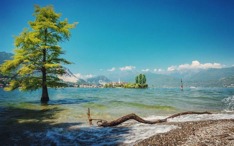Fischerinsel im Lago Maggiore. Lago Maggiore, Italy Landscape #Nature #photography Nature_collection Tree Loves_world Love_europe Love_united_italia Fantastic_captures Lake View Allmyown Ig_shotz Amazing View