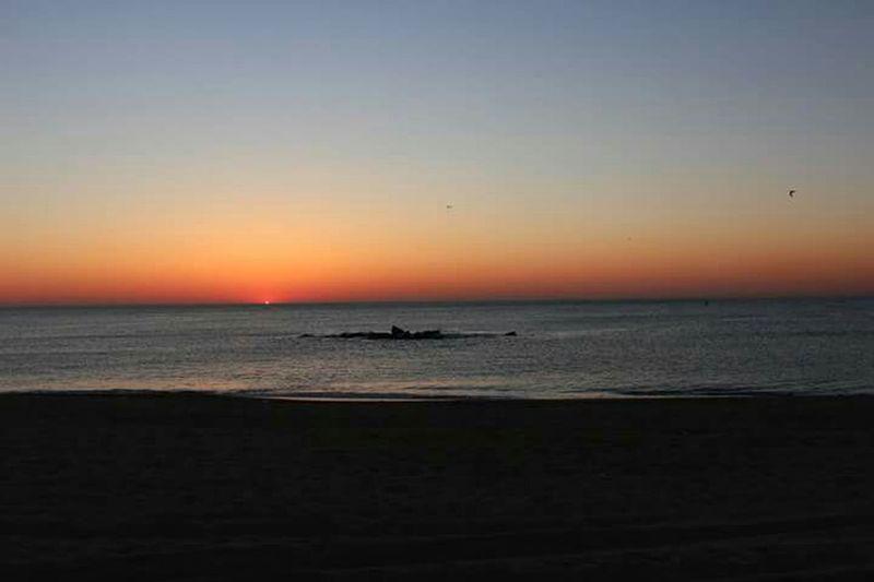 Original Salida Del Sol Amanecer En Mi Ciudad Barcelona Beach Dawn Dawn Of A New Day Sunrise Sunrise_Collection On The Beach