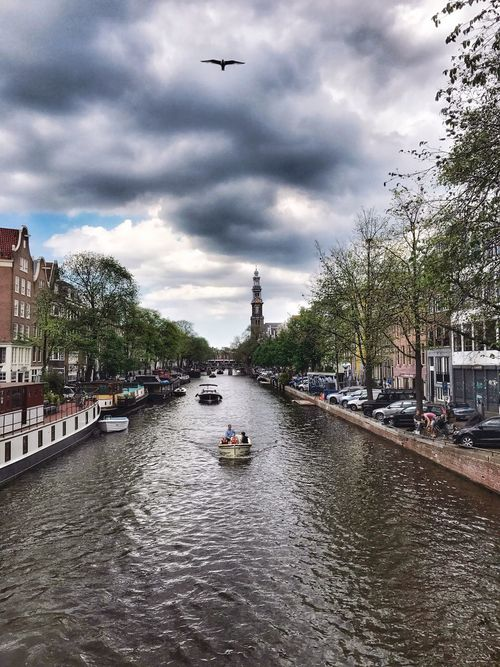 Prinsengracht Amsterdam Canal Cloud - Sky Birdinair Birdinflight Boat Westertoren Dutch Cities Dutch House Streetphotography Houseboats In Amsterdam Trees Sky And Clouds