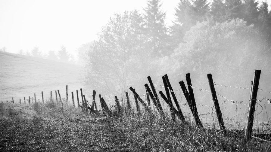 Wooden Posts On Landscape Against Sky