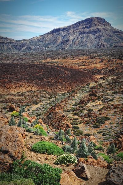 del teide national park with its vulcanic landscape. tenerife. Teide Del Teide Vulcano Canary Islands Teneriffa Tenerife