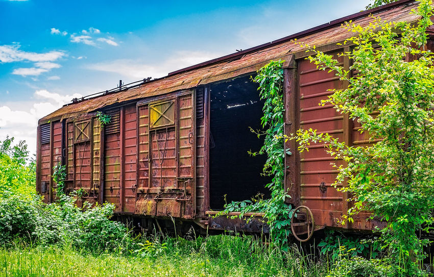 Old railway wagon derelict captured by vegetation Derelict Old Wagon Wagon  Architecture Building Exterior Built Structure Cloud - Sky Day Derelict & Abandoned Grass Green Color House No People Outdoors Railway Station Sky Tree