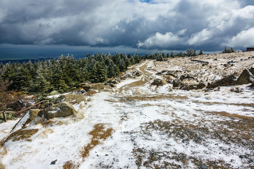 Landscape in the Harz area, Germany. Relaxing Winter Beauty In Nature Brocken Cold Temperature Day Harz Journey Landscape Mountain Mountains Nature No People Outdoors Saxony Anhalt Snow Tourism Travel Destinations Tree Vacation