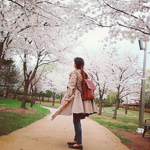 Here Belongs To Me Date Rosé Korea