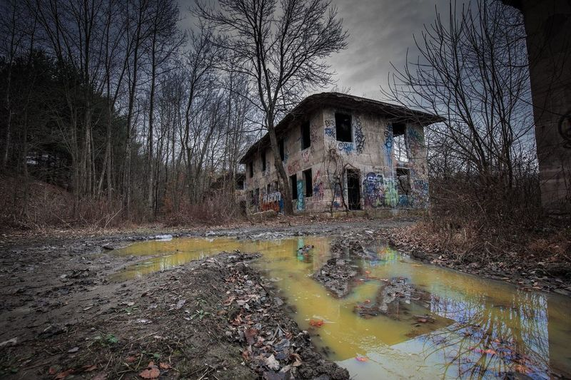 Abandoned building against bare trees