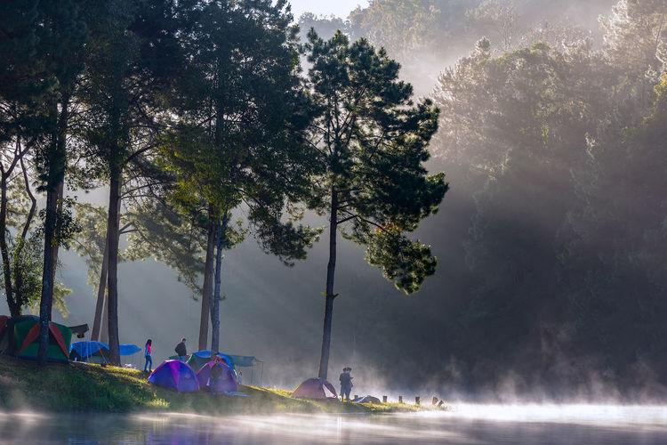 Woman camping by lake
