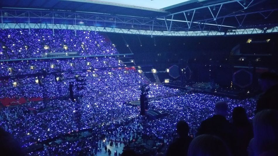 Stadium Fan - Enthusiast Night
