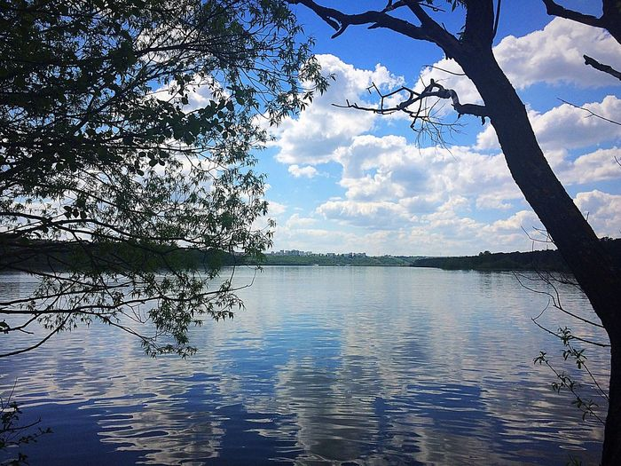 калуга24 калуга калуга40 парк прогулка ПочтиЛето мойвыходной Природа природароссии Tree Cloud - Sky Nature Water Beauty In Nature Day No People Weekend City