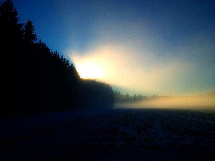 Winterstimmung im Nebel. Nature Natural Natural Beauty Winter Wonderland Trees Forest Fog Foggy Morning Snow ❄ Fichtelgebirge
