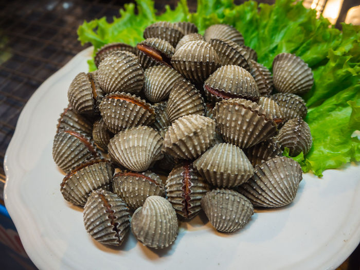 High angle view of shells in basket
