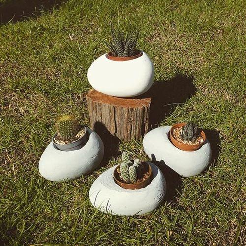กระถางทรงไข่ ใบละ150บาท งานน่ารักๆขนาดกำลังเหมาะมือกระถางปูนเปลือย กระถาง กระบองเพชร กระถางต้นไม้ แต่งบ้าน แต่งสวน Loft Rustic Dib_te DIY Design Cactusthailand Cactusmagazine Cactus Cactusclub Cactusclubcafe Cactusclubs Gardener Gardens Gardening Sacculent Secculent Plants Planters