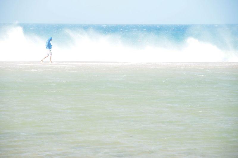 Sea Beauty In