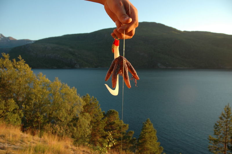 Cropped hand of person holding starfish with hook against lake and mountains