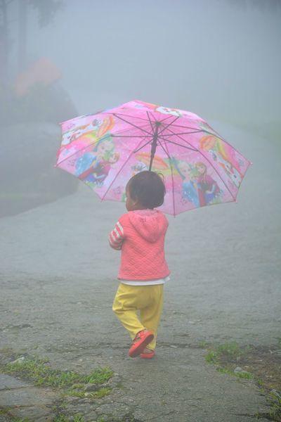 Rural Scene Scenics Morning Fog Children Only Childhood