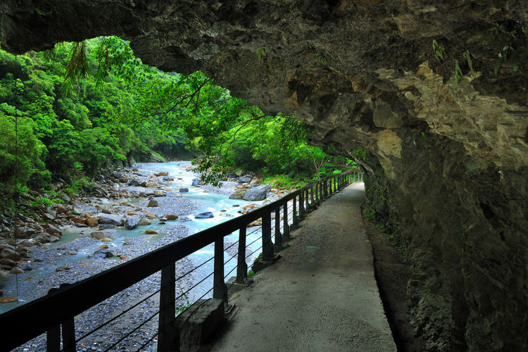 Trail Lifestyle Cool Taiwan Taroko National Park Travel Beauty In Nature Comfortable Day Forest Health Landscape Nature No People Outdoors Peaceful Plant Rock - Object Scenics Stream The Way Forward Tranquil Scene Tree Water Waterfall