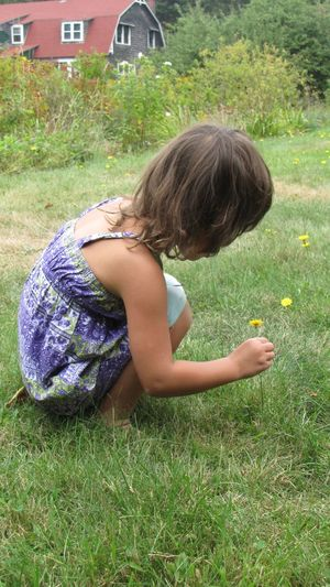 Side View Of Girl Picking Flowers While Crouching On Grassy Field