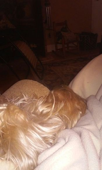 Cute Pets QuinnBear sleeping!