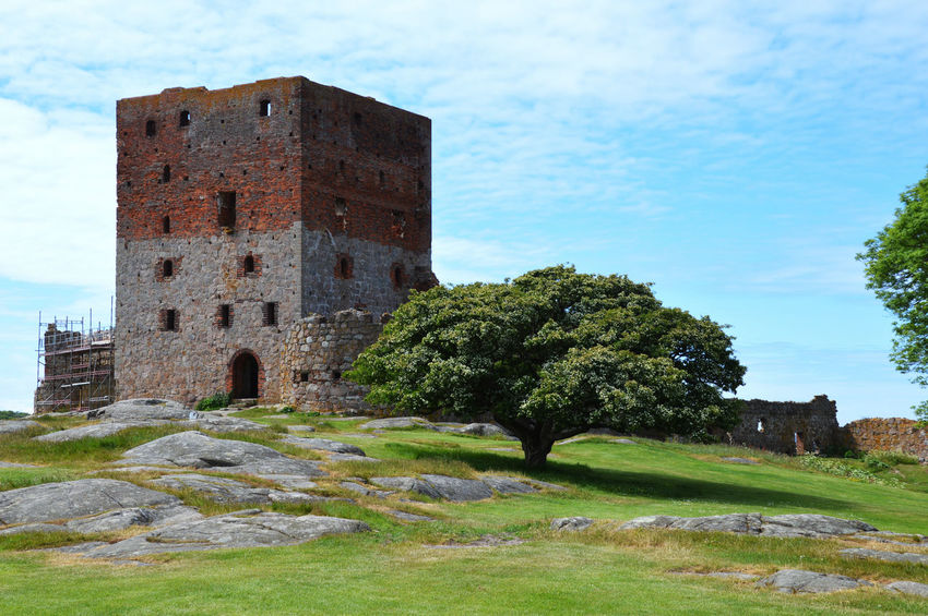 Bornholm Denmark Abandoned Architecture Building Building Exterior Built Structure Day Grass Hammershus Scandinaviancastle Ruins Bornholm Denmark History Land Nature No People Old Old Ruin Outdoors Plant Sky The Past Travel Travel Destinations Tree