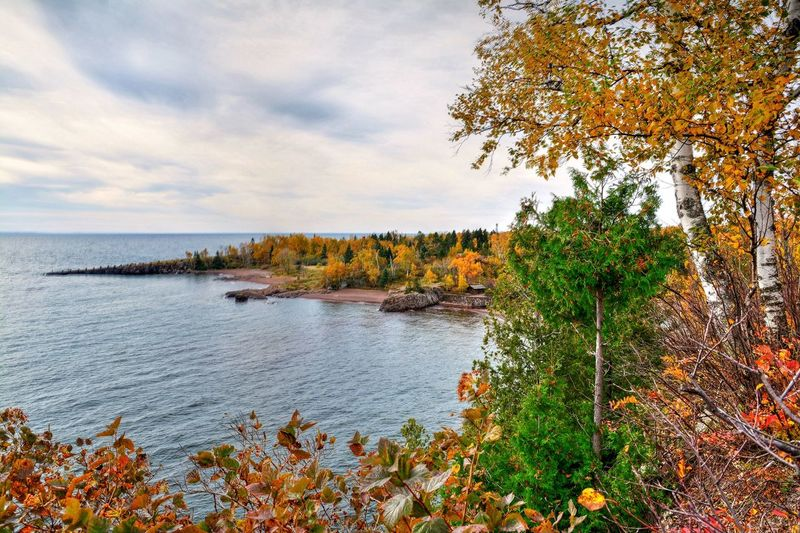 Gooseberry Falls State Park Water Sea Tranquil Scene Scenics Tree Horizon Over Water Beauty In Nature Tranquility Plant Sky Idyllic Nature Flower Growth Non-urban Scene Calm Cloud Day Outdoors Cloud - Sky Malephotographerofthemonth Minnesota Beauty In Nature