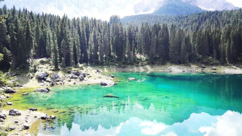 Water Tranquil Scene Tranquility Tree Scenics Non-urban Scene Nature MC* Beauty In Nature Calm Pond Lake Turquoise Colored Idyllic Reflection Mountain Blue Waterfront Day Standing Water the unike lake with all rainbow colours.. Lago di Carezza Themagicmission