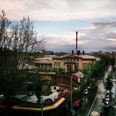 Dorcol Belgrade Beograd Serbia srbija rain belgradephoto belgradestreet ig_srbija ig_belgrade nature sky