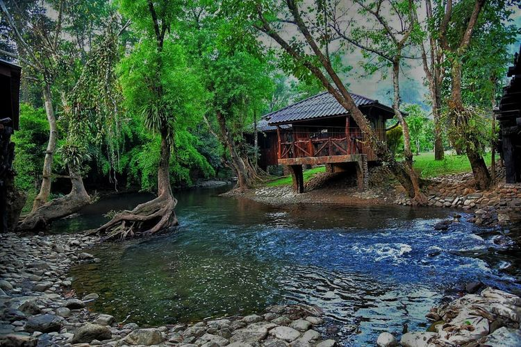 Thailand🇹🇭 Water Built Structure Architecture Tree Nature Outdoors Day Stilt House Waterfront Building Exterior Tranquility No People Beauty In Nature Plant