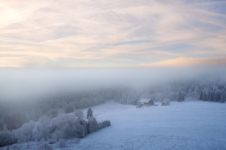 EyeEmNewHere Beauty In Nature Cloud - Sky Cold Temperature Day Fog Landscape Nature No People Outdoors Scenics Sky Snow Tranquil Scene Tranquility Tree Weather Winter