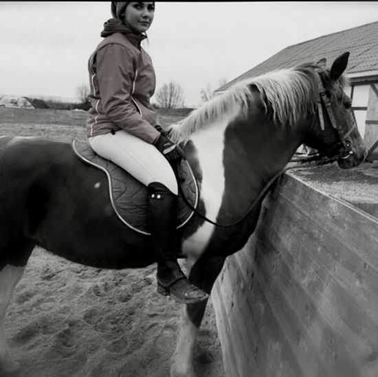 Horsebackriding  Lifestyle Painthorse Rider That's Me Equestrian Life Relaxing