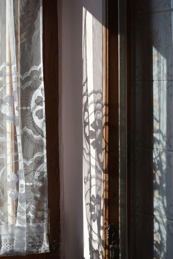 Light And Shadow Shapes Flower Sunset Curtain Drapes  Window Close-up Capture Tomorrow
